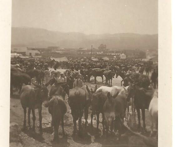 feria de ganado en Ronda año 1926